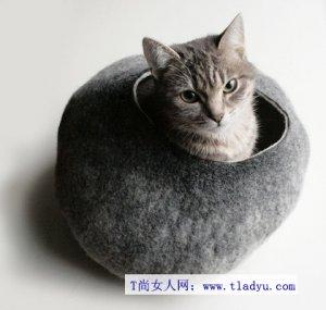 幼猫怎么养 幼猫不可少的八种生活用品