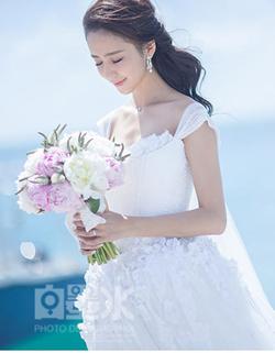 佟丽娅陈思成结婚照