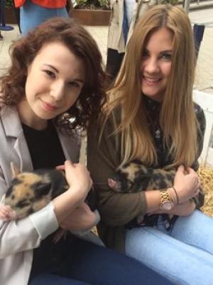 英国学生宠物疗法忘却课业烦恼