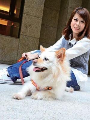 养狗注意事项 养狗需要什么条件