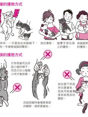 你知道如何正确抱猫吗