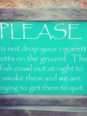 动物园安全警示标语大全 动物园搞笑标语大全