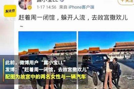 """故宫博物馆院长王旭东道歉 """"开车进故宫""""事件最新消息"""