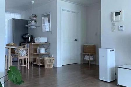女性单身公寓简洁舒适 家居风尚单身公寓设计